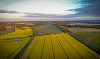 Aerial Photography - Yellow Fields